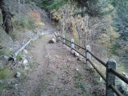 particolare del sentiero 6 in discesa