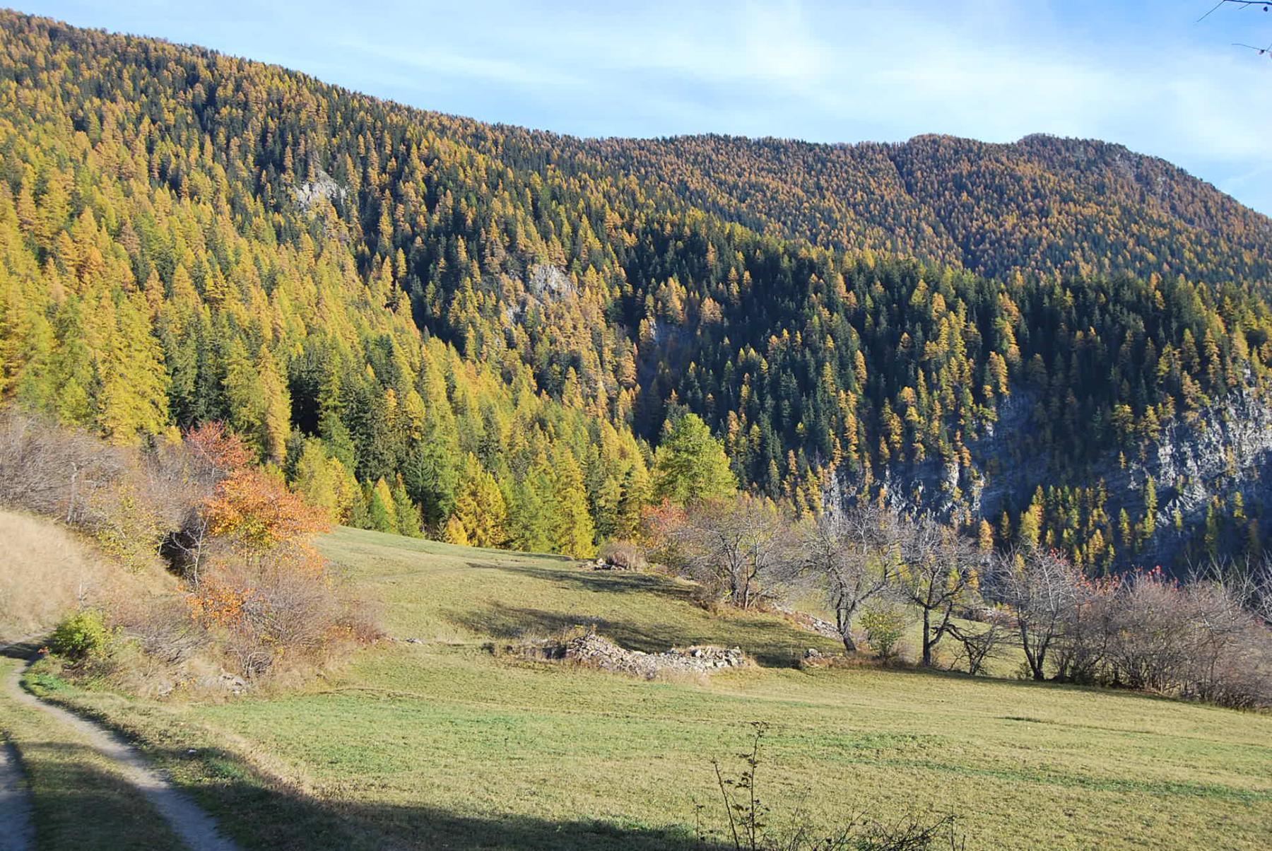 Il Colle ed il Court de Bard con i colori autunnali visti da Challancin