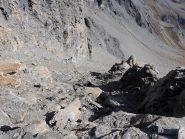 07 - la pietraia finale vista dalla cresta sopra il colle