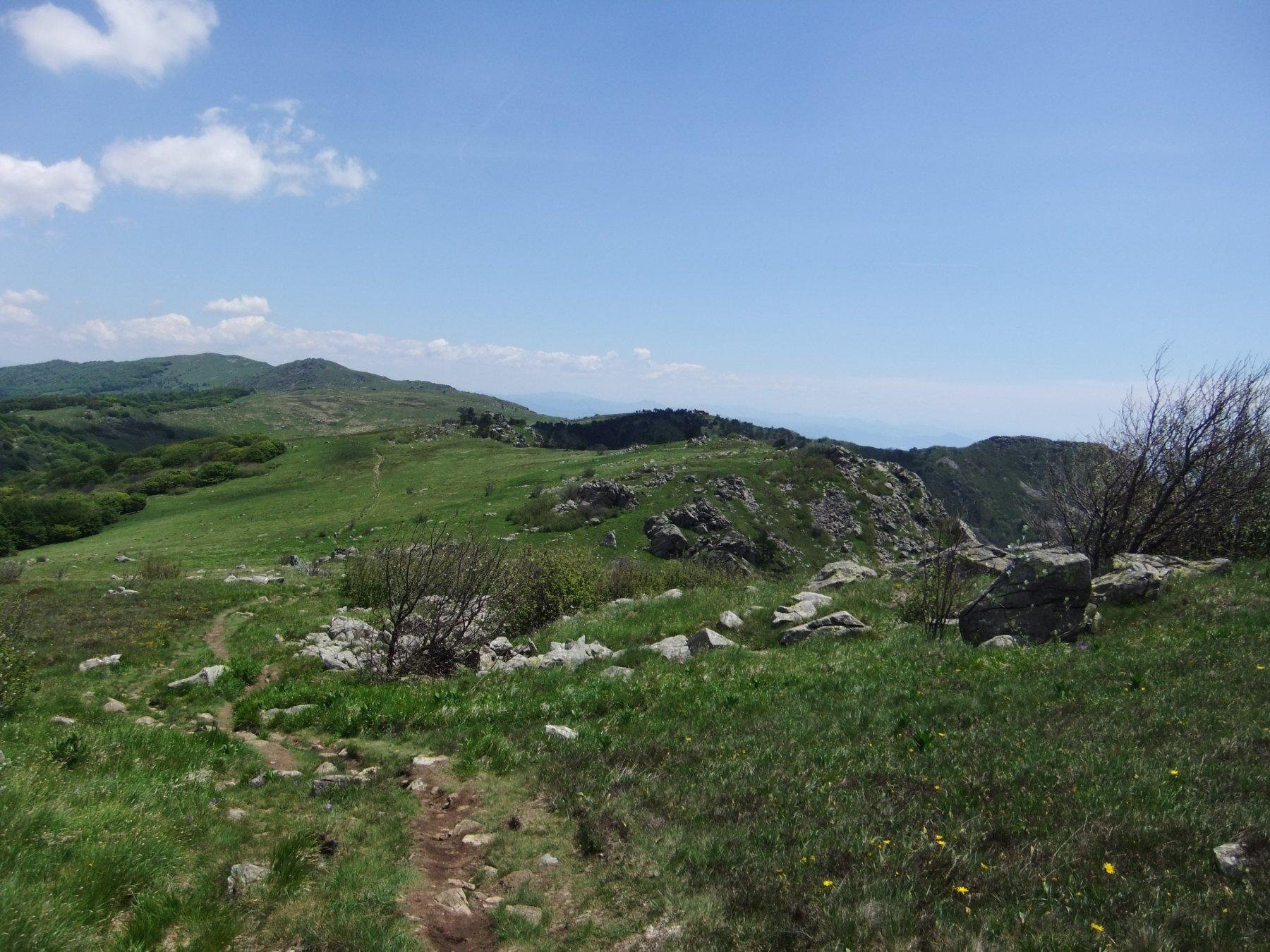Argentea (Monte) da Prato Rotondo, anello per Rifugio Argentea, Rifugio Padre Rino 2020-04-15
