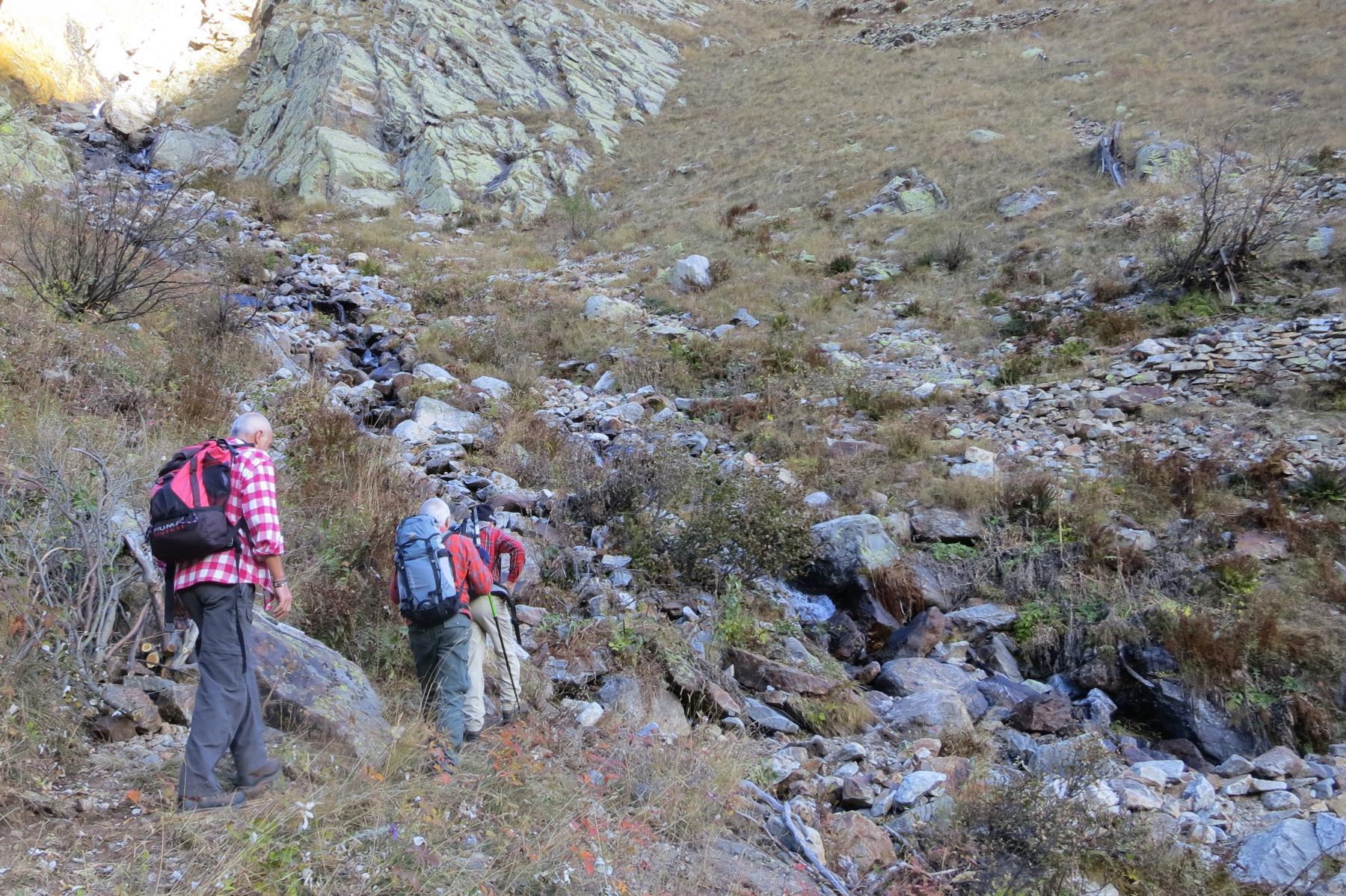 il sentiero che sale in Valmiana è stato sbancato da poco