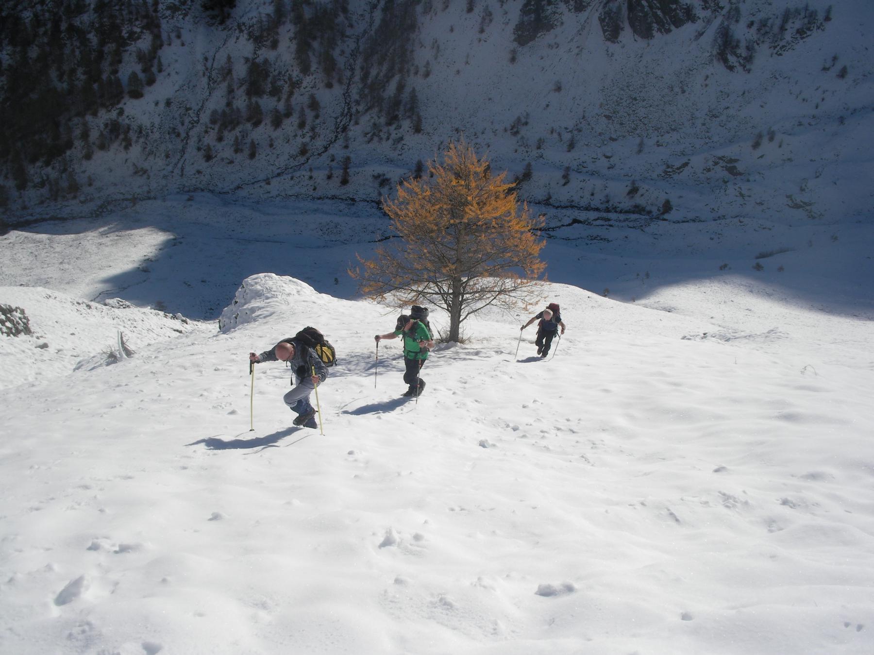 sulla prima neve ..,verso il Gias Vei..