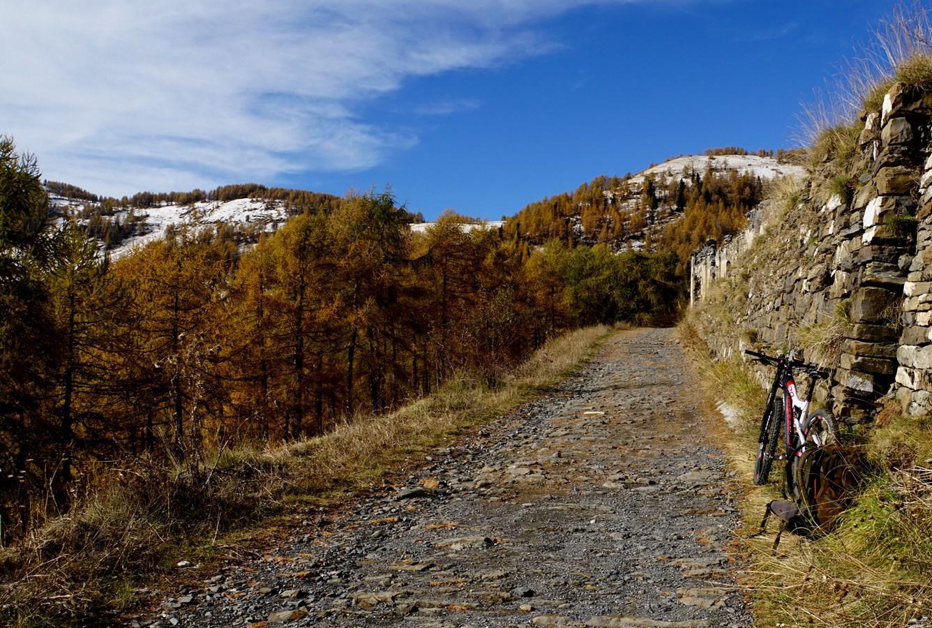 Pietravecchia (Monte) da Creppo, giro 2014-11-08