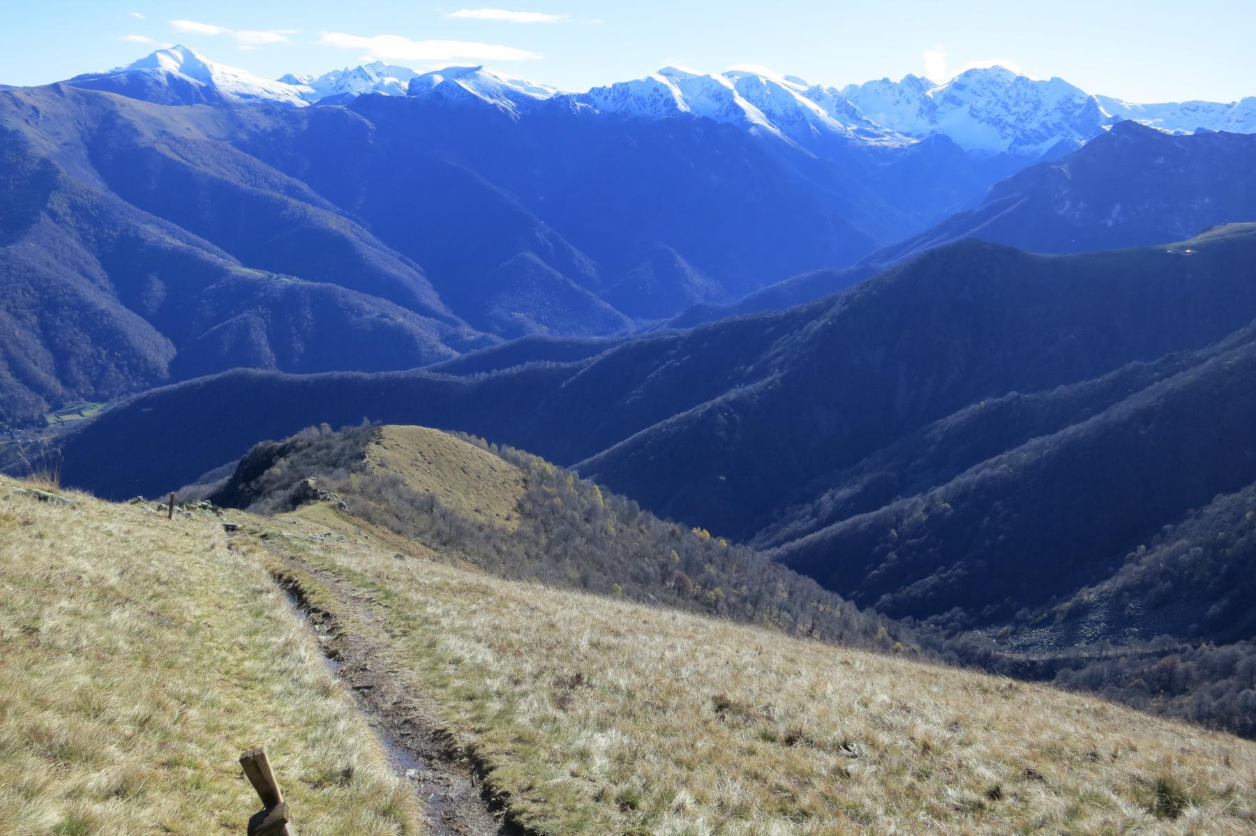 sulla curva della carrareccia, ai 1620m, le paline indirizzano al lineare sentiero per la Bisalta