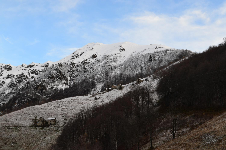 il Pizzo Tracciora di Cervatto visto dall'Alpe Barbughera