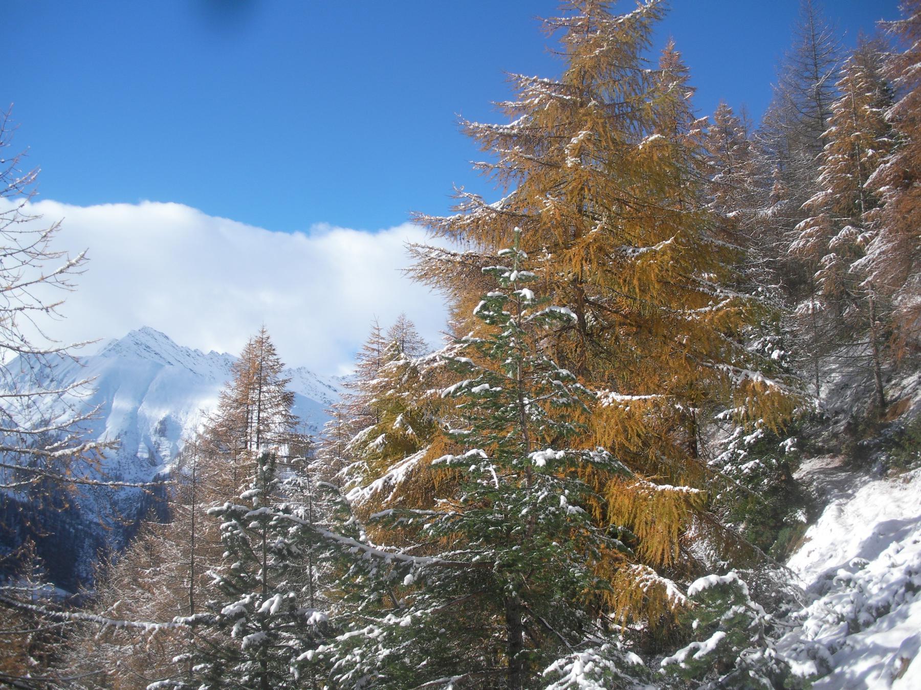 autunno e inverno in un connubio totale..