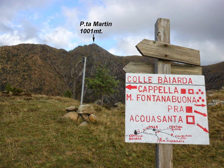La P.ta Martin vista dal Colle della Baiarda.