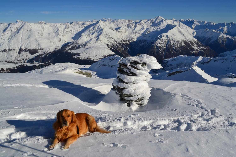 ometto di vetta e panorama: svettano su tutti Bernina e Pizzo Stella