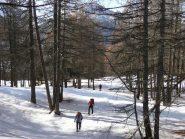 Poi la neve migliora nel bosco