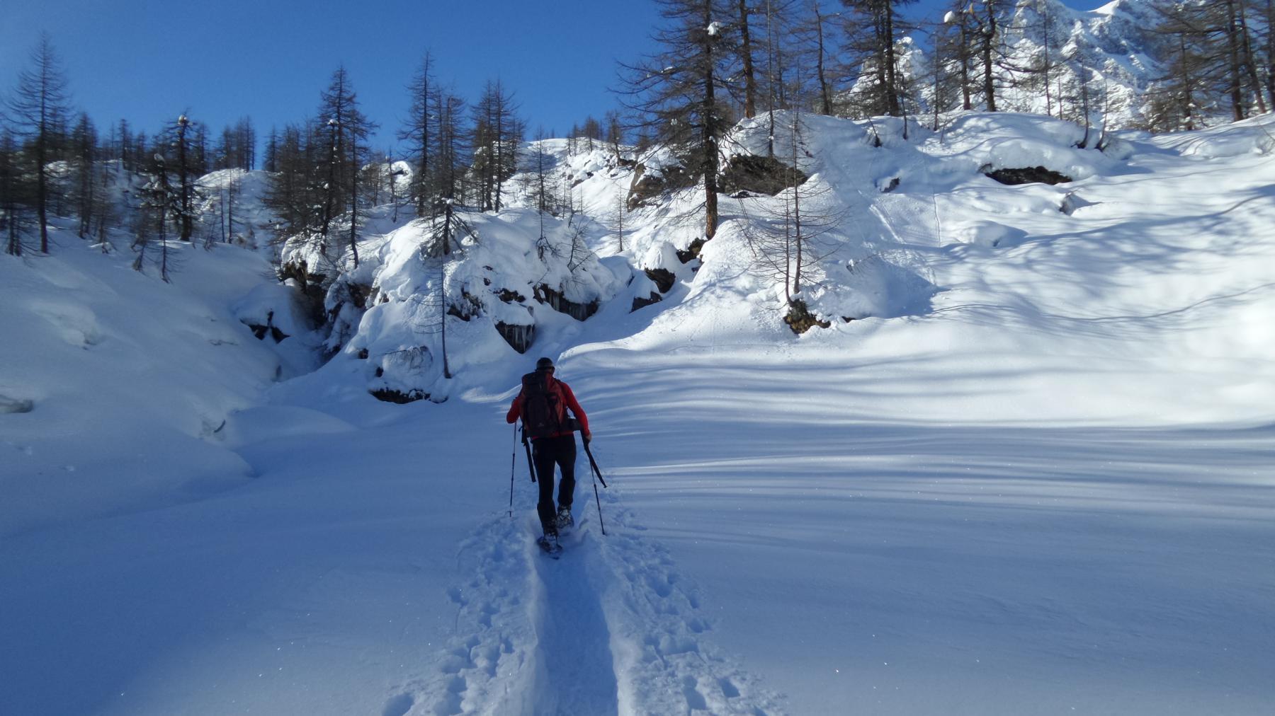 un ampio pianoro sopra l'Alpe Misanco