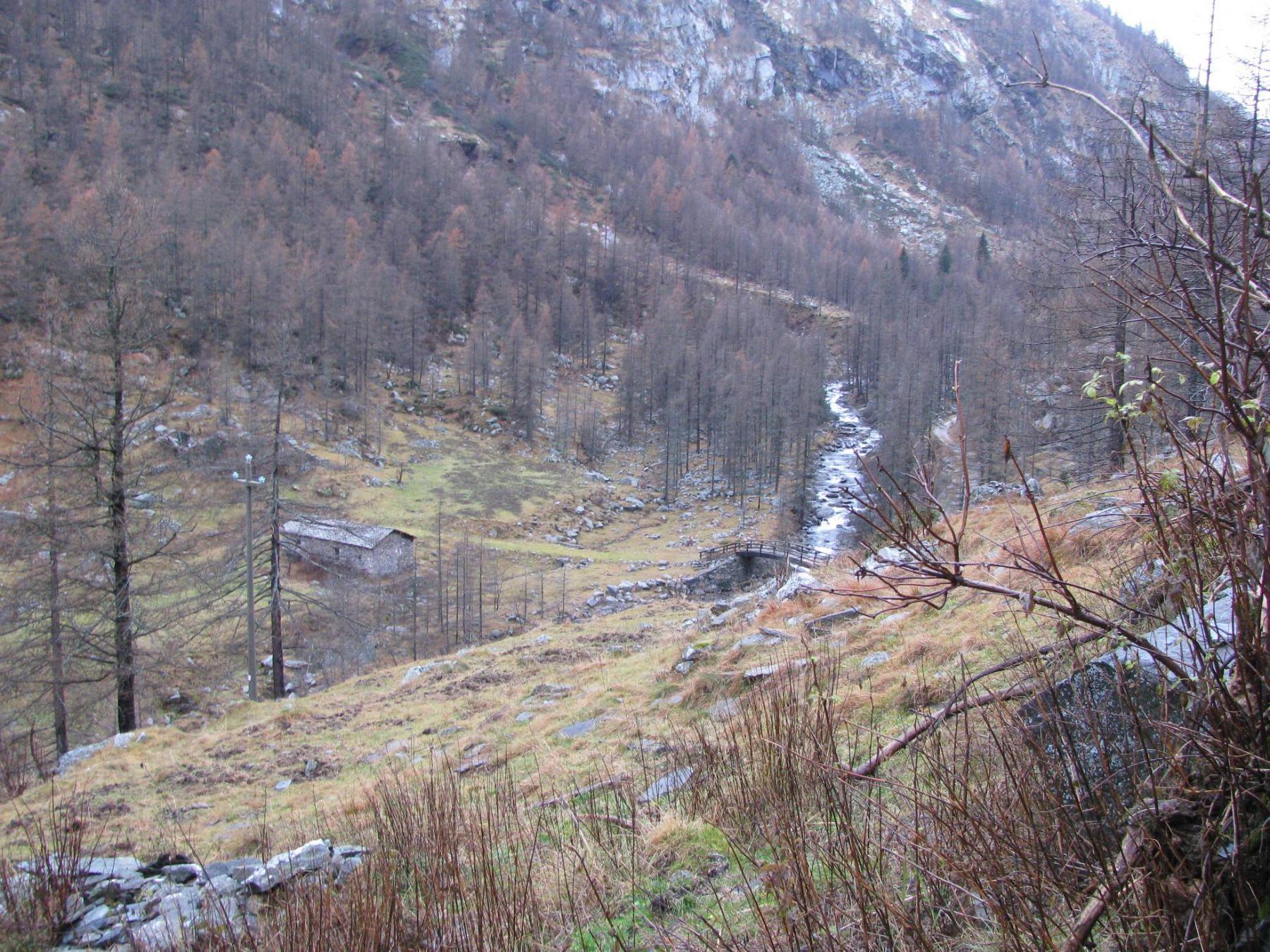 Salendo a San Besso, l'Alpe Cognonà
