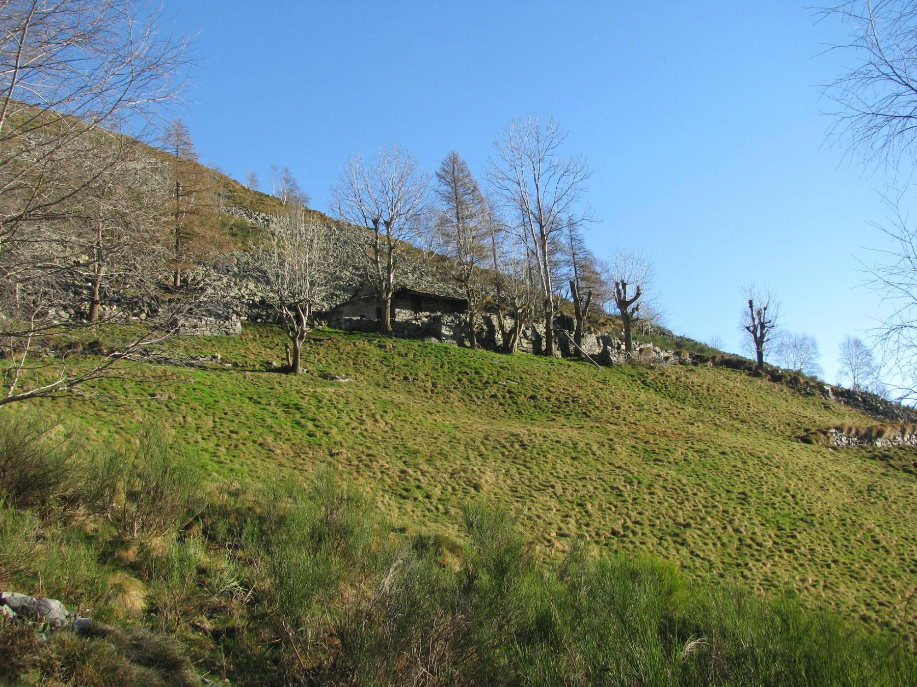 Alpe Bitogno di Vico