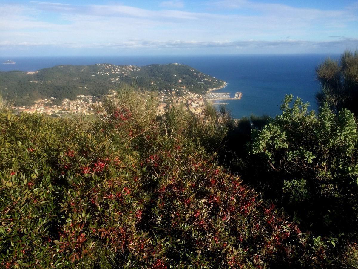 Mea (Colla) da San Bartolomeo al Mare, single track dei Ciapà 2014-12-12