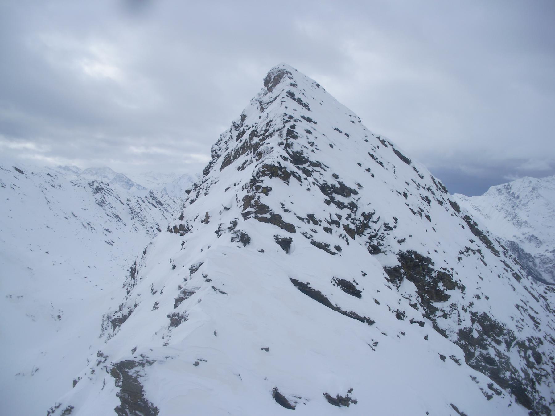 La svettante punta Founset dal colletto all'inizio della cresta alla P.Bruta..