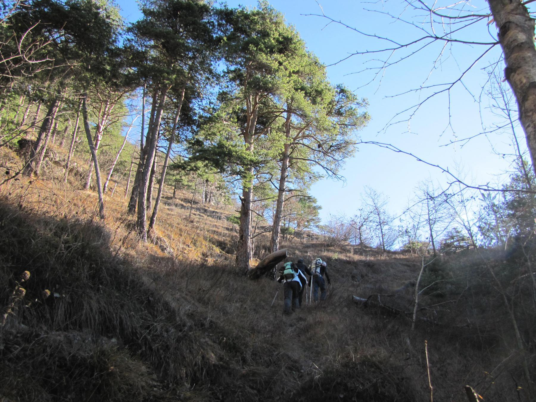 il vecchio sentiero, ben tracciato e utilizzato per secoli, non può essere più percorso, e la nuova traccia si impenna faticosa