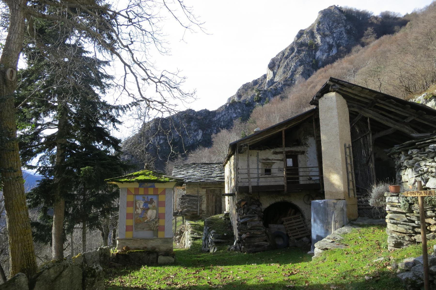 nei prati attorno a Rubbio si coltivava frumentin (grano saraceno) e canapa