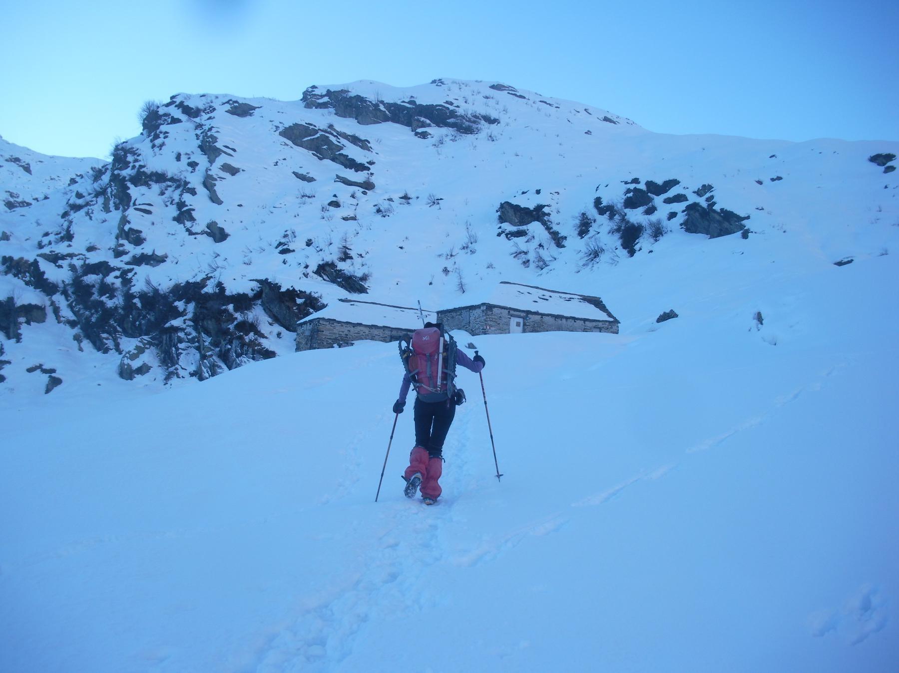 All'Alpe Cortenuovo..