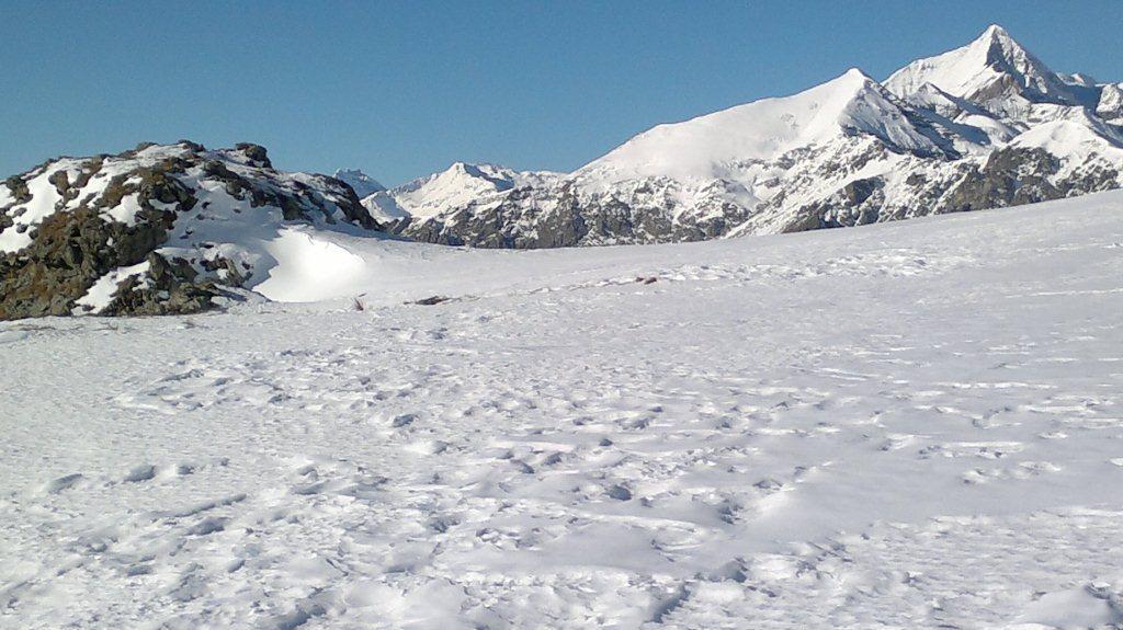 neve al colletto