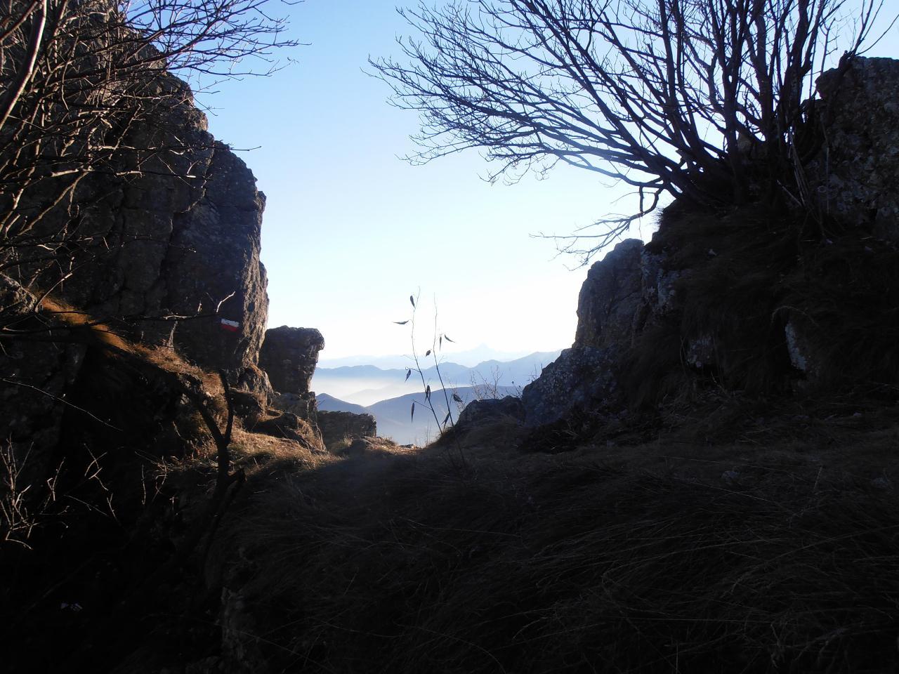 08 - dal canalino si sbuca sul sentiero normale di Rocca Sella nel punto più alto dello stesso