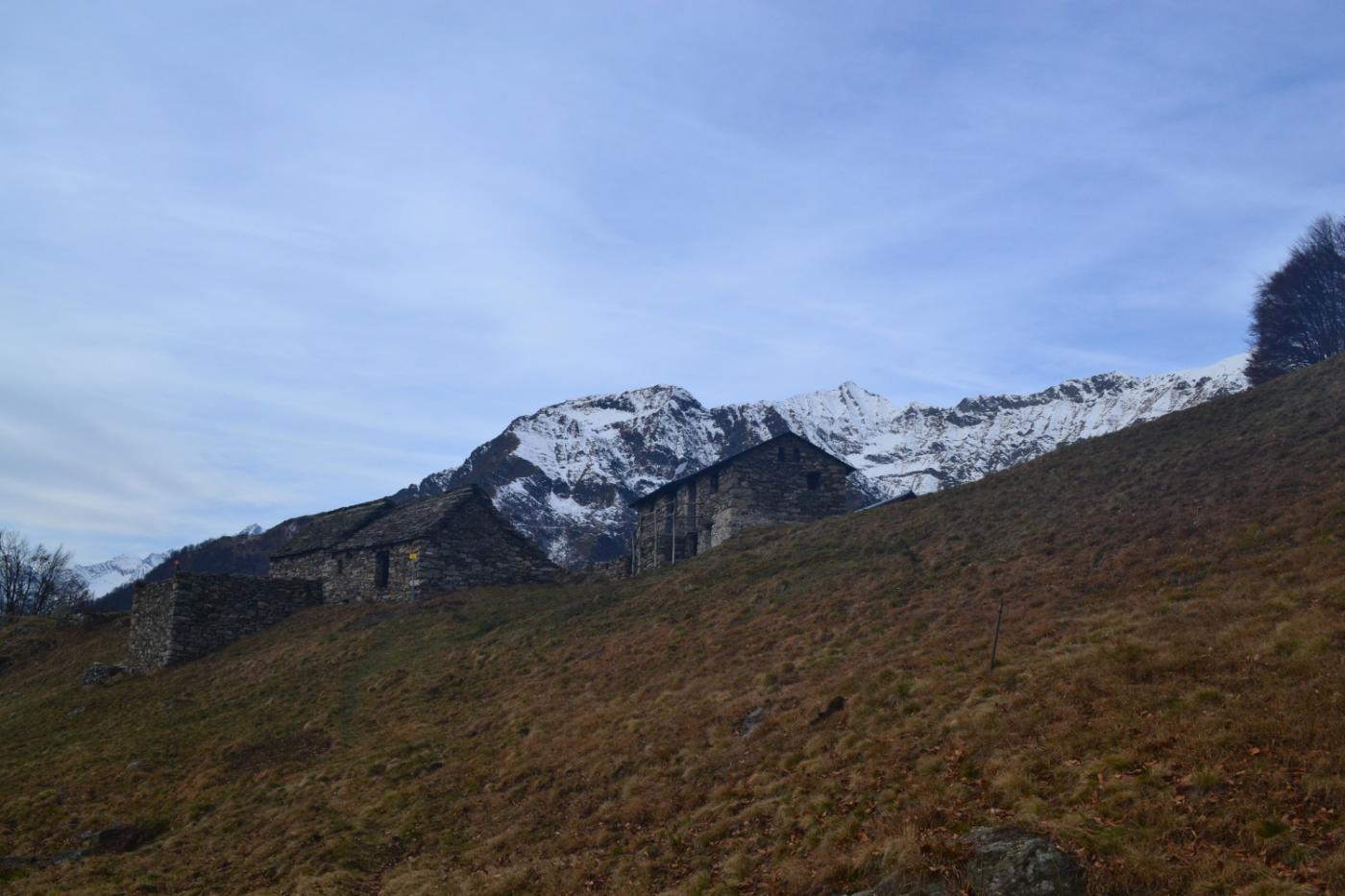 in prossimità dell'Alpe Bobbio (1376 m)