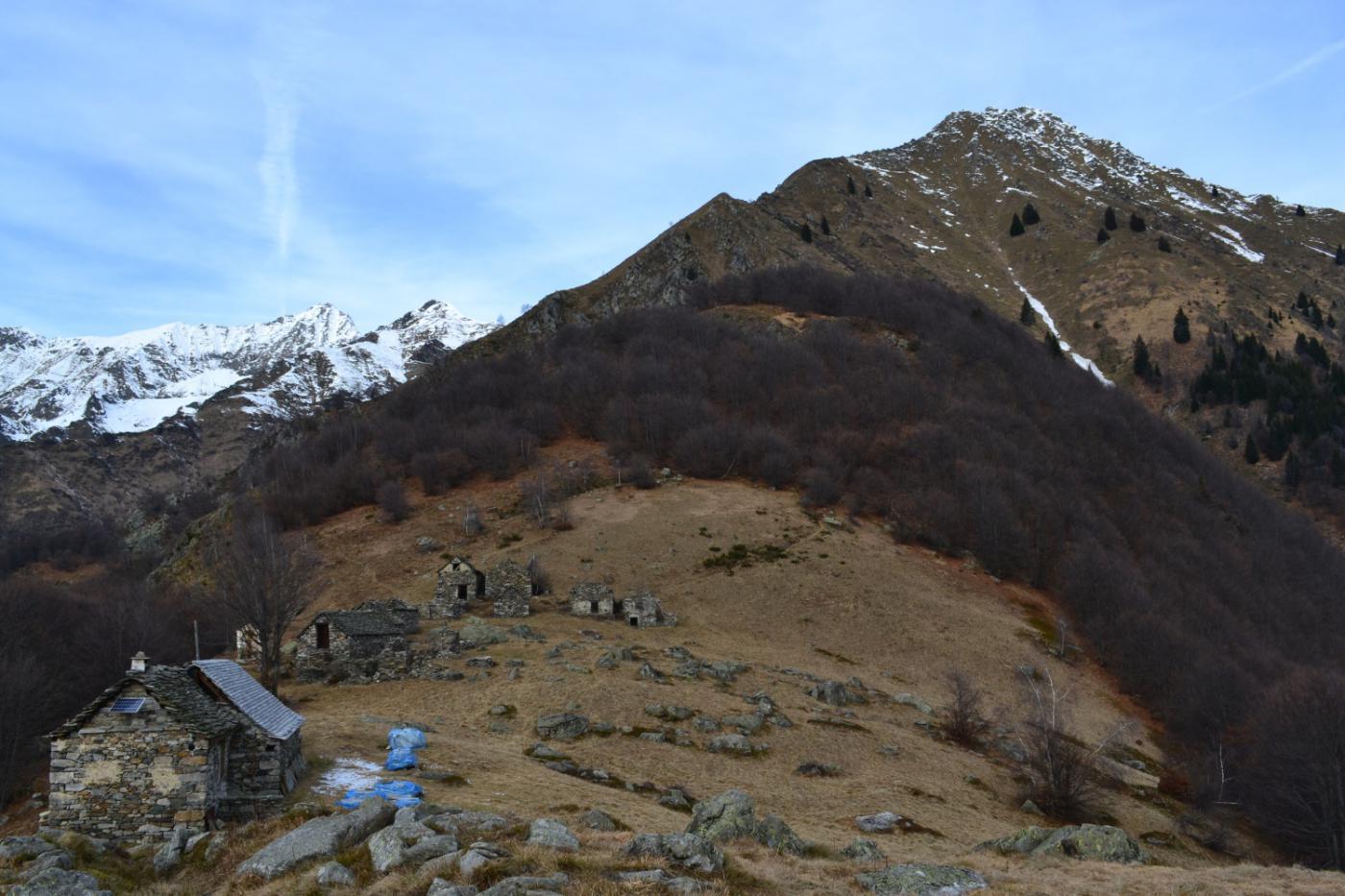 il poggio panoramico dell'Alpe la Piana (1488 m) con la Punta della Cinquegna sullo sfondo