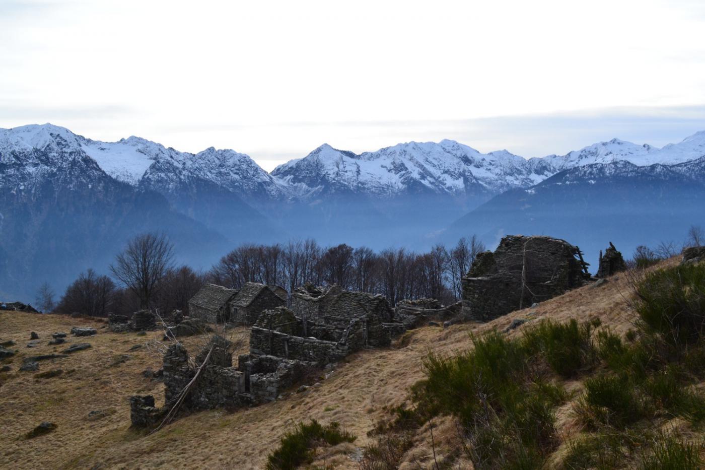 ritorno all'Alpe la Piana