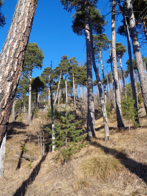 la suggestiva valle che scende verso Crocetta Soprana