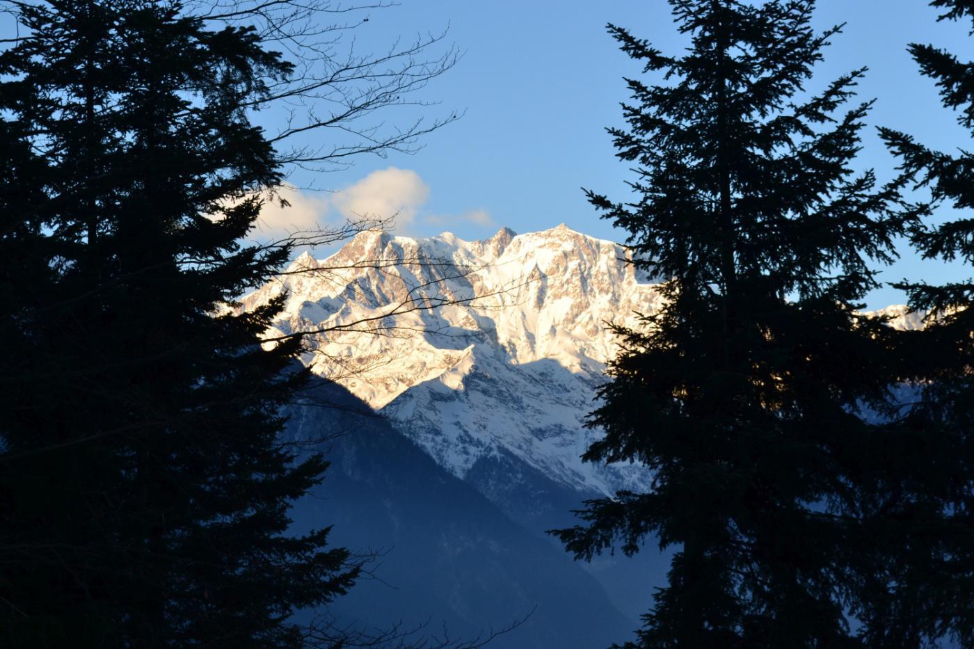 il Rosa visto dal Provaccio (1130 m)