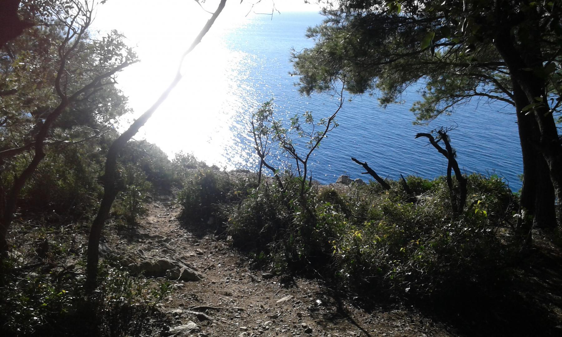 paesaggio sulla baia di saraceni