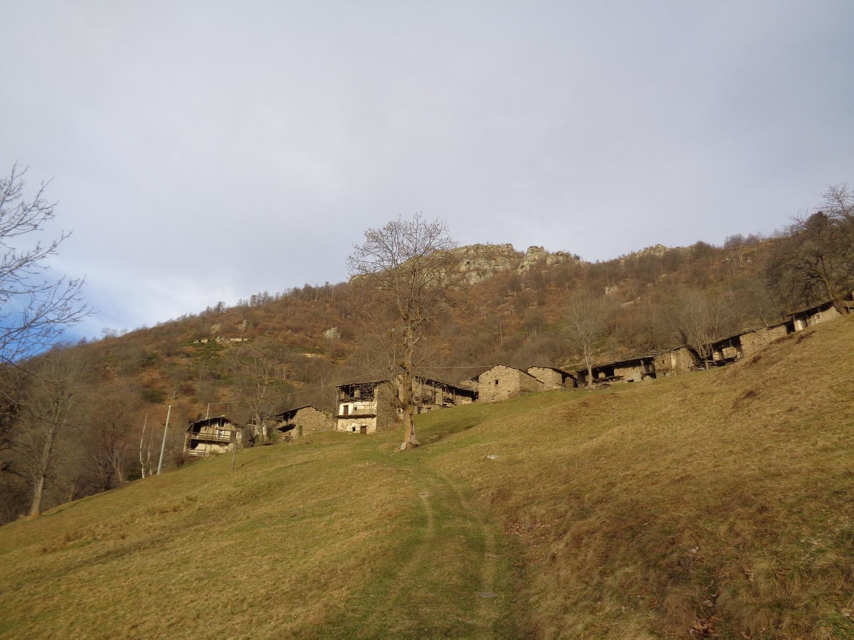 Grange superiori