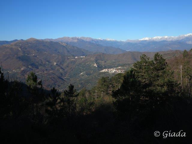 Vista verso le Alpi