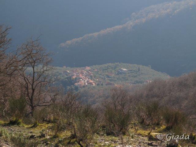 Un bel borgo tra gli ulivi