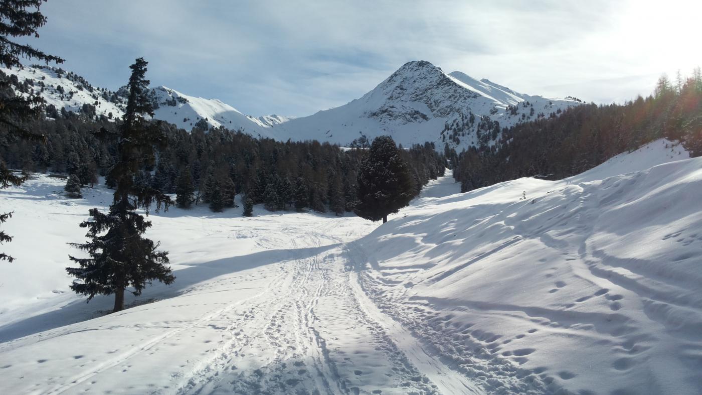 una decina di centimetri di fresca nella parte alta del tracciato (2100 m)