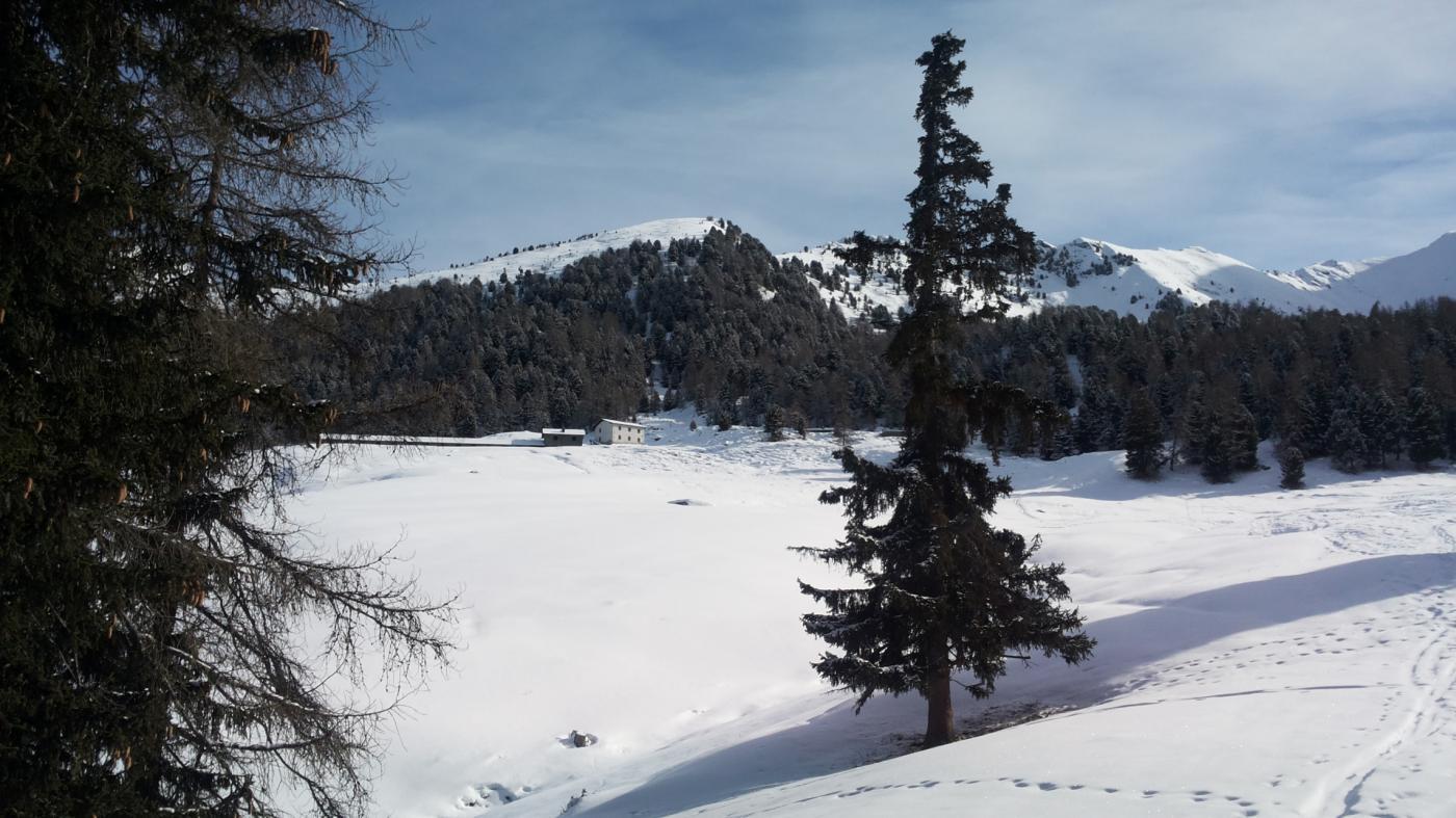 Alpe Chamolé