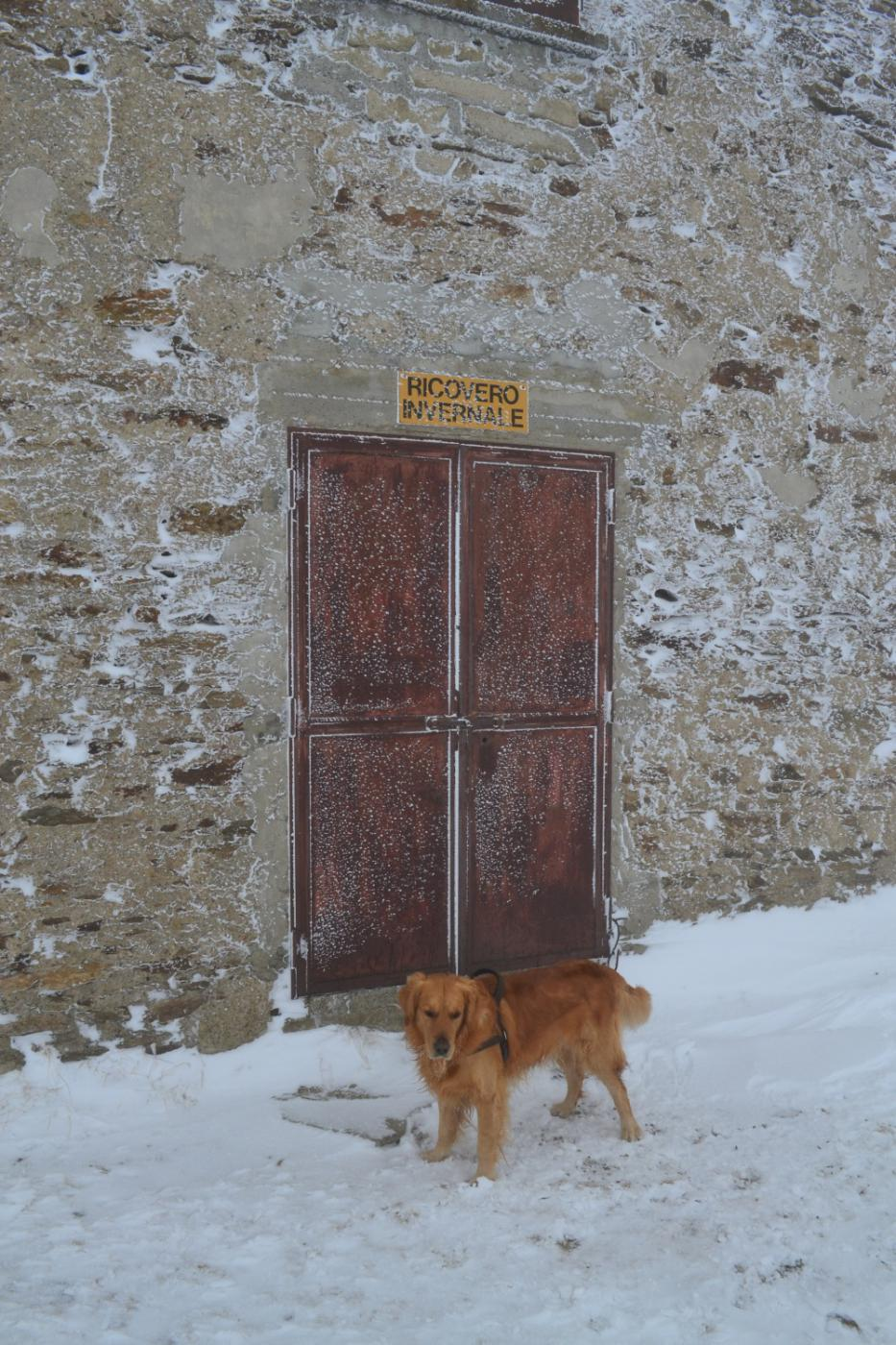 ingresso del ricovero invernale