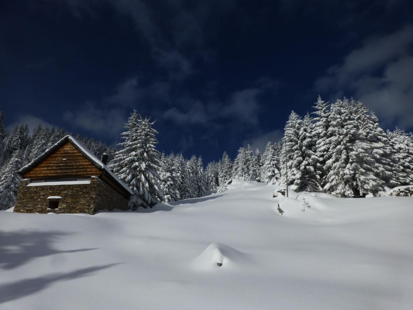Cielo blu su neve vergine