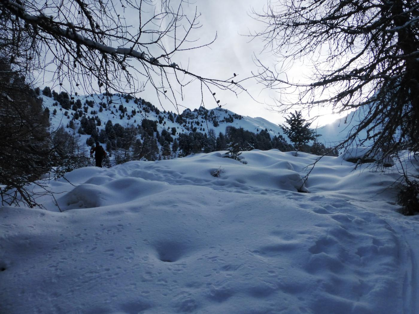 appena sopra  l'alpe Chamolè
