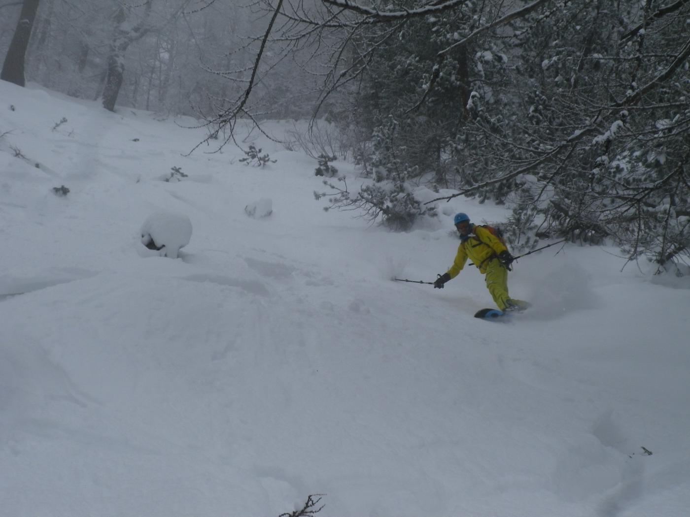 nel bosco si scia bene anche se non c'è fondo
