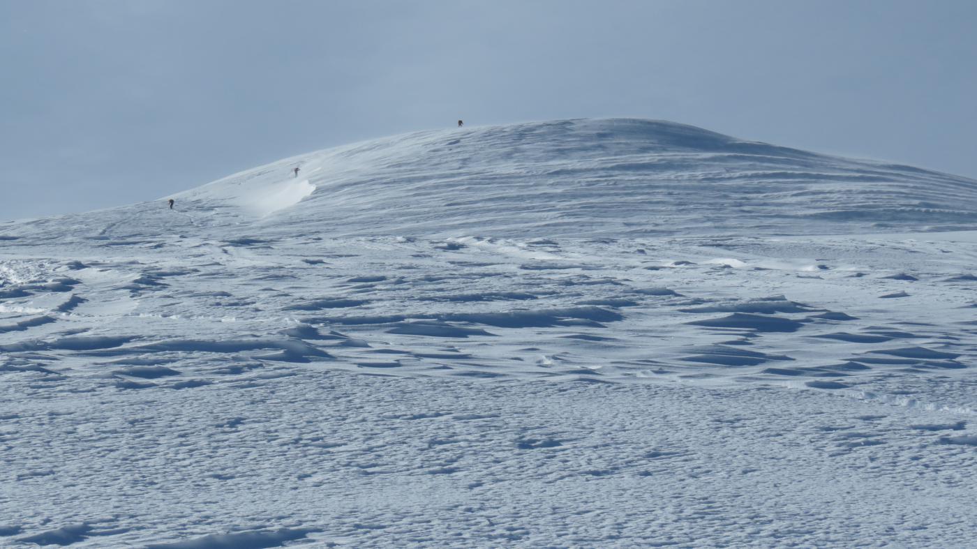 l'ampia dorsale NE del Monte Cazzola