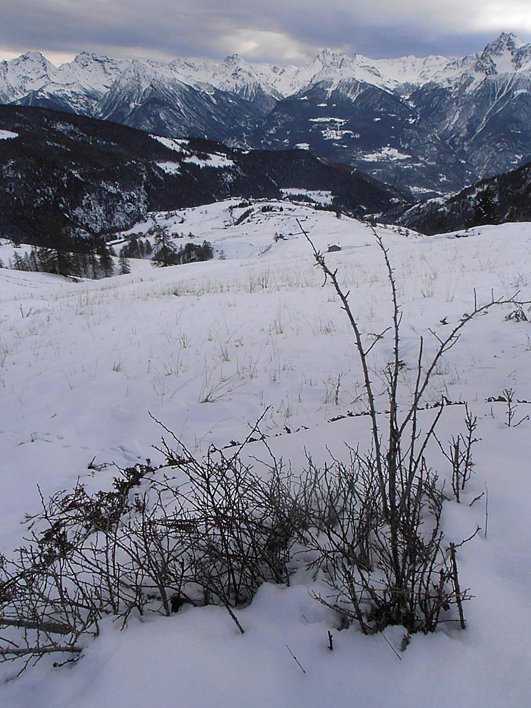 Poca neve sui pendii bassi
