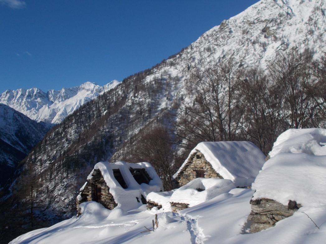 Alpe Motto
