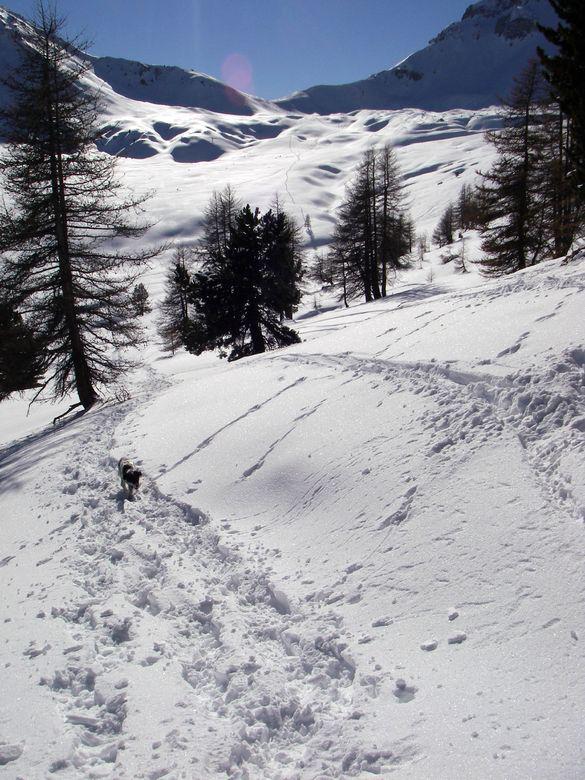 scendendo su Chalet Izoard (sfondo Col Ourdeis)