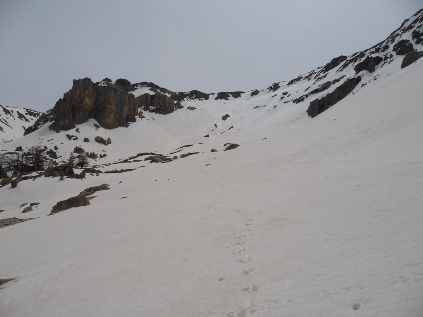 Alpavin - versante N