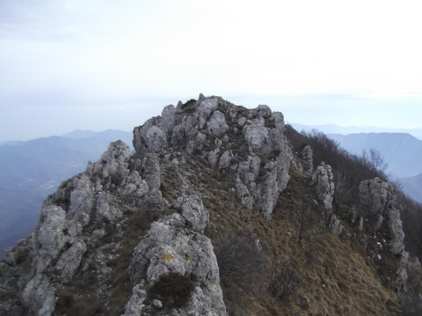 Castellino (Pizzo) da Nasino, anello per Monte delle Gettine e Passo delle Caranche 2015-02-03