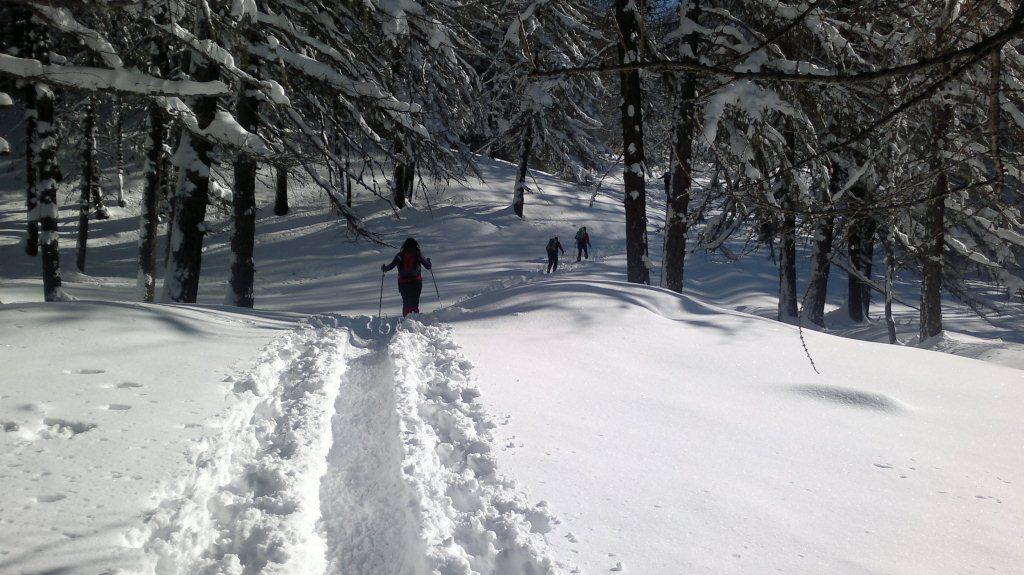 tanta neve...