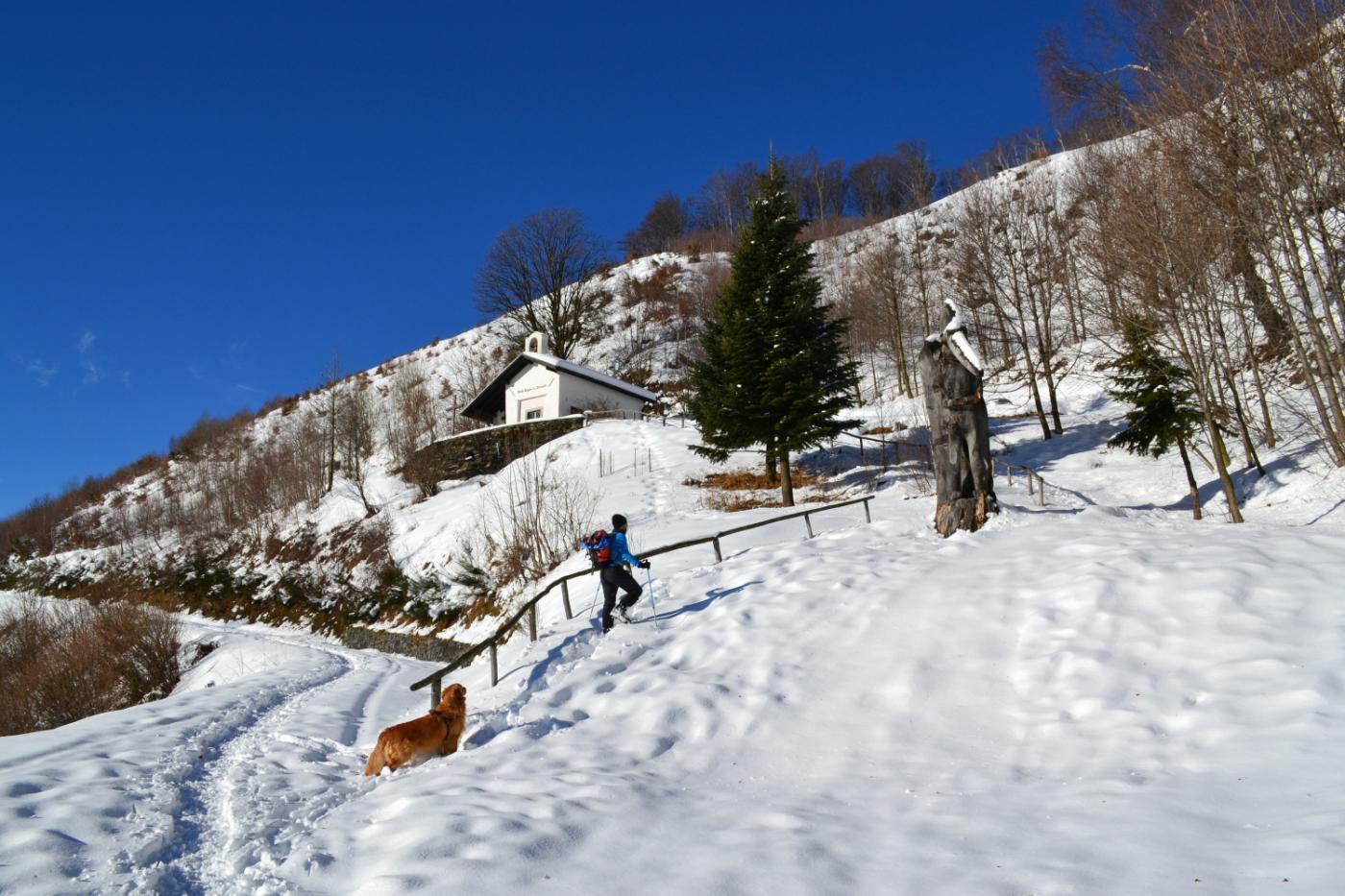 imbocco del sentiero a Pozzuolo ed il caratteristico Pinocchio in legno (1181 m)