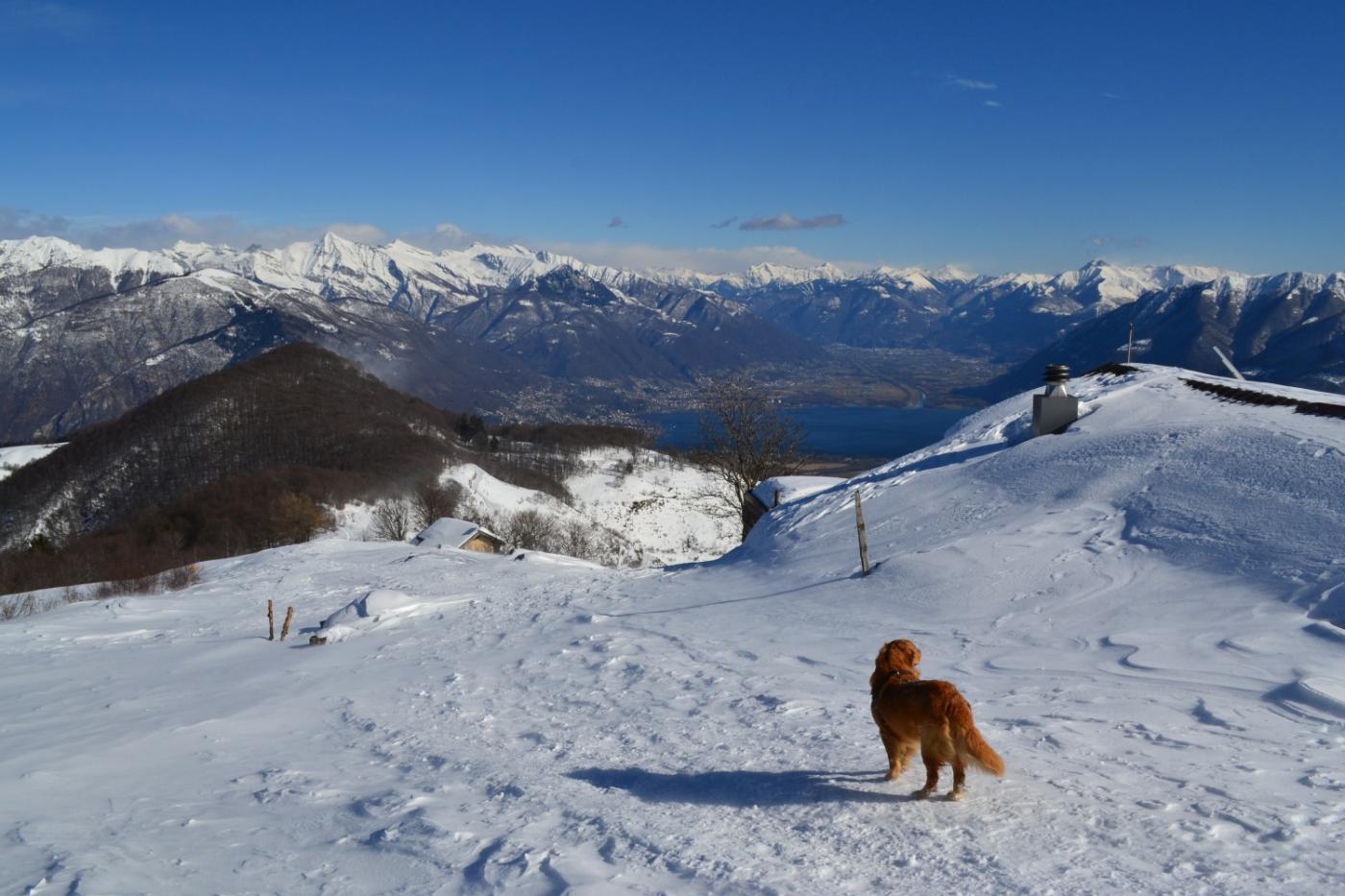 poco sopra l'Alpe di Naccio