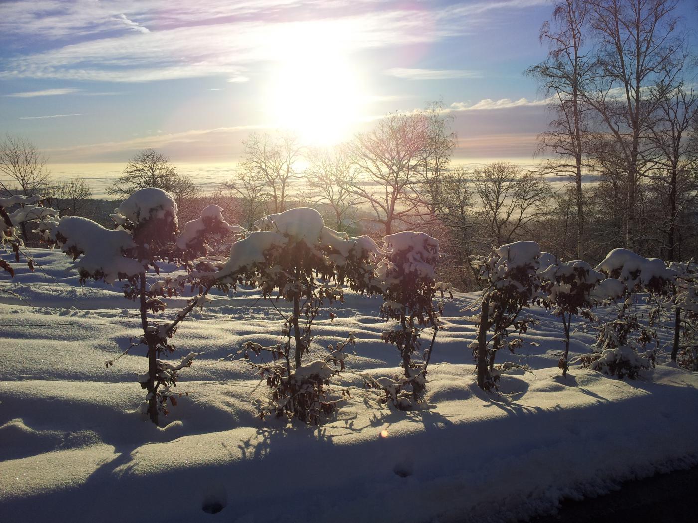 Neve recente ovunque