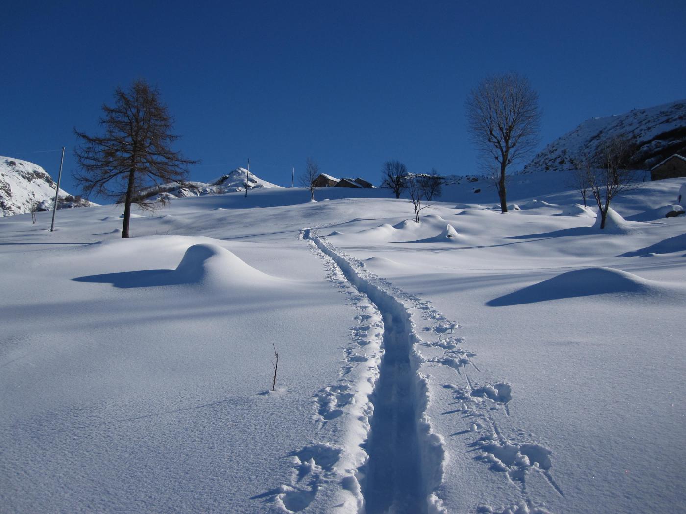 la traccia di salita sotto l'alpe Buri
