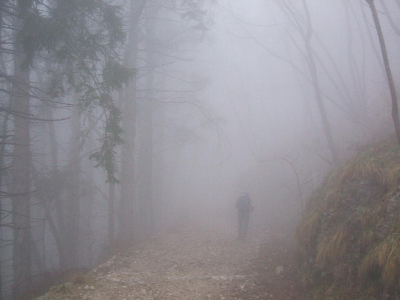 mulattiera nr 105 visibilità